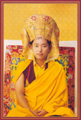 Portrait of Rinpoche